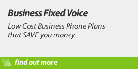 Business Fixed Voice